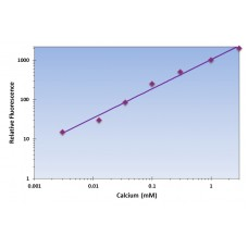 Calcium Assay Kit - Fluorometric