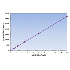 MMP3 Assay Kit - Fluorometric